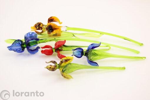 glazen irissen